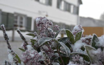 Wintertage im Allgäu