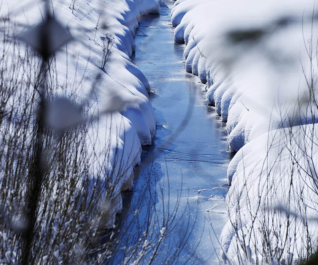 Winterwandern & Schneeschuhlaufen in Wangen im Allgäu
